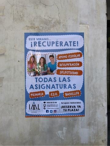 BUZONEO PUBLICIDAD Y PEGADO DE CARTELES - foto 4