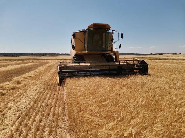 AGROSERVICIOS - foto 3