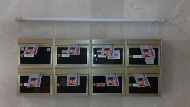REPARTO DE PUBLICIDAD ECONÓMICO Y EFICAZ - foto 2