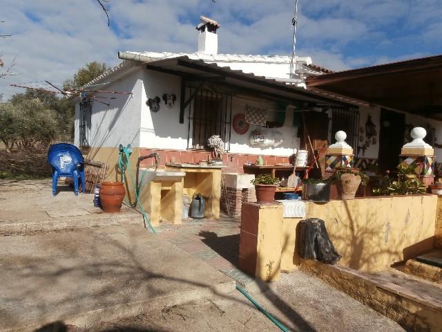FINCASA:  RONDA - foto 7