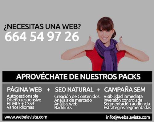 ¿BUSCAS DISEÑO WEB? - foto 1