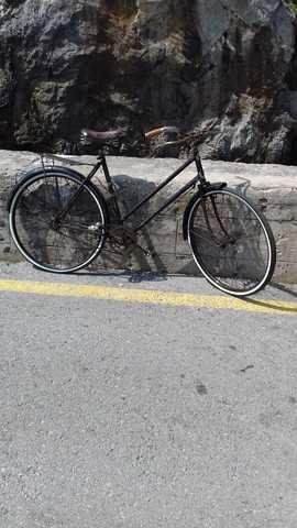 Bici De Varillas Bh Especial