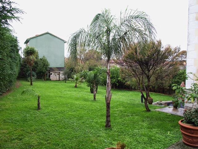 SAN ROMAN DE LA LLANILLA - EL SOMO - foto 3