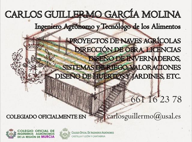 INGENIERO AGRÓNOMO COLEGIADO - foto 1