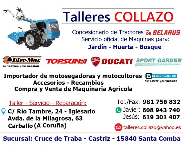 DUCATI ( VENDIDO ) - MOTOAZADA TILLERS DLT 7000 - foto 4
