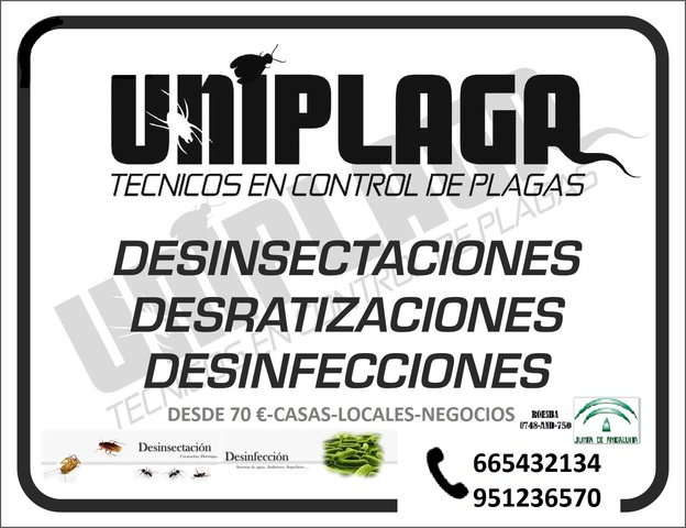 UNIPLAGA DESINSECTACION - foto 1