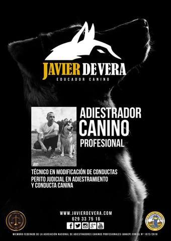 JAVIER DE VERA - EDUCADOR CANINO.  - foto 1