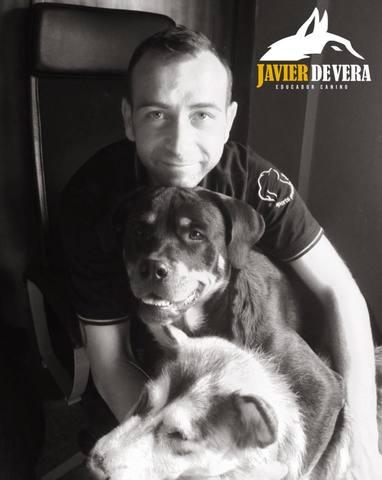 JAVIER DE VERA - EDUCADOR CANINO.  - foto 2
