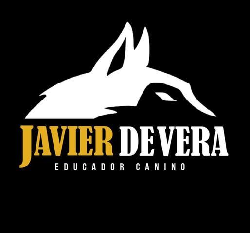 JAVIER DE VERA - EDUCADOR CANINO.  - foto 3
