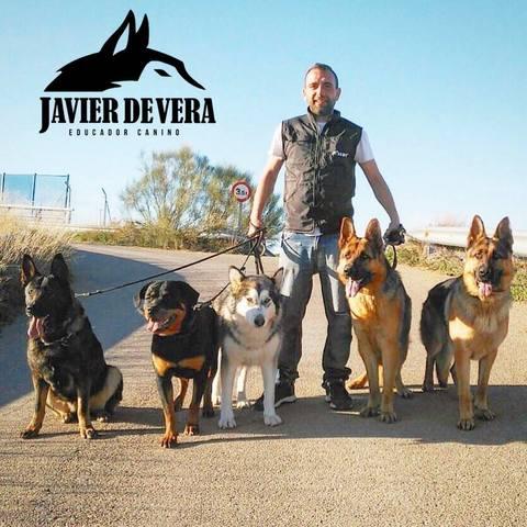 JAVIER DE VERA - EDUCADOR CANINO.  - foto 5