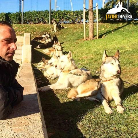 JAVIER DE VERA - EDUCADOR CANINO.  - foto 8