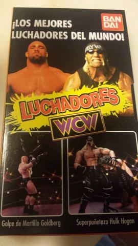 Wwf hasbro Mattel WWF WWE Mattel Sting 2k18 Head Wrestling figures