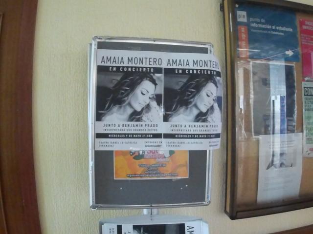 BUZONEO DE PUBLICIDAD- PEGADO CARTELES - foto 8