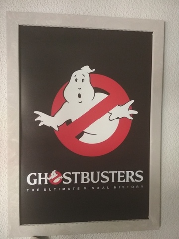 Ghostbuster Poster