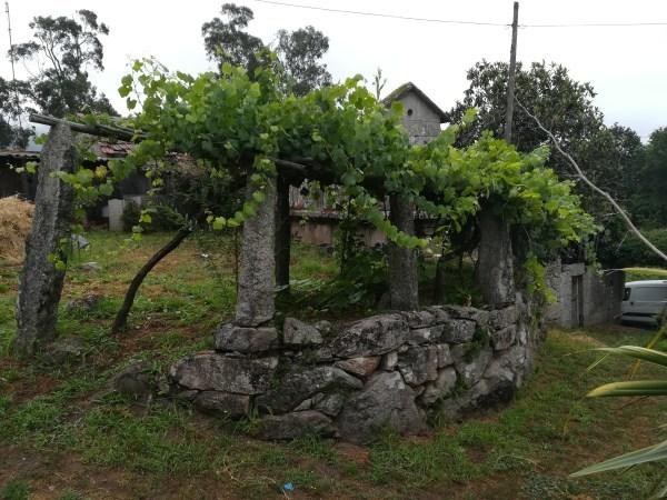 CASA PARA RESTAURAR EN SOUTOMAIOR - foto 7