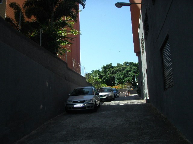 LOCAL/NAVE AVDA.  BENITO PEREZ ARMAS - foto 3