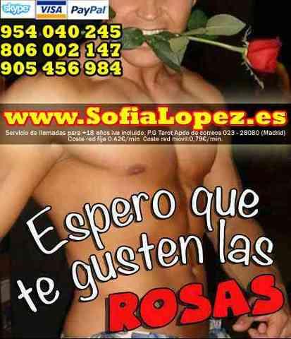 Pasion.com Gay Calle Alzira