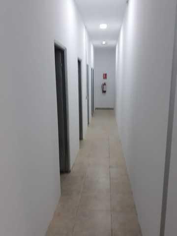TRASTEROS EN NUEVO HORIZONTE,  FTV - foto 3