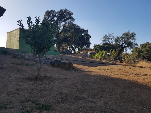 CASTILLO DE LAS GUARDAS (VALDEFLORES) - foto 7