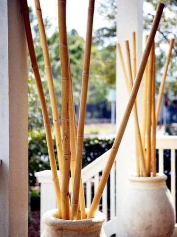 Mil Anuncioscom Cañas De Bambú Segunda Mano Y Anuncios