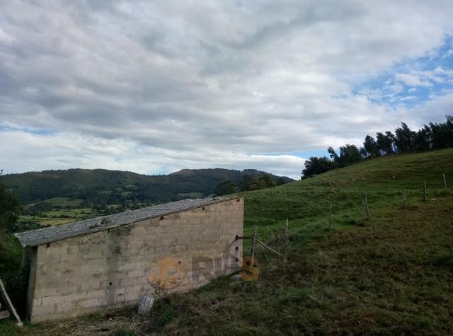 CABAÑA CON FINCA EN ARGOMEDA DE VILLAFUF - foto 5