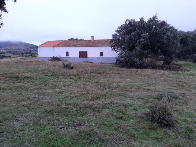 FINCA DE CAZA EN SEGOVIA - foto 2