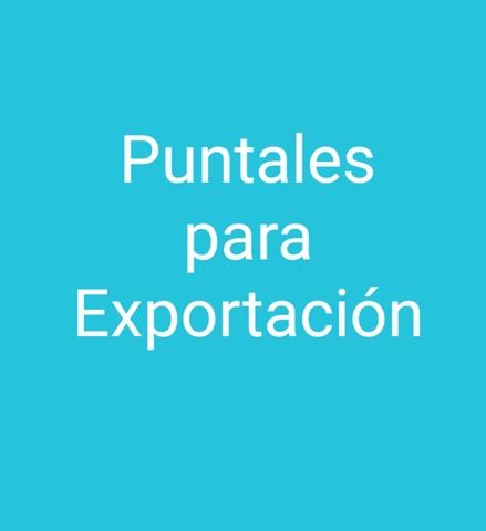 COMPRÓ  LOTES GRANDES DE PUNTALES - foto 2