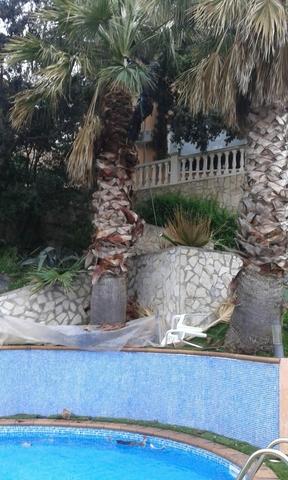 DESBROCE  PARCELAS LIMPIEZA DE TERRENOS - foto 4