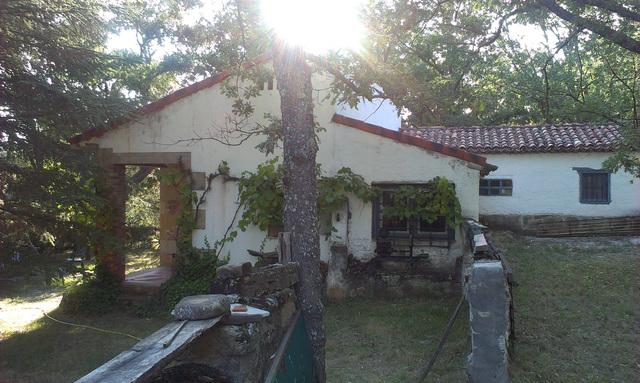 PEDRAJAS.  CARRETERA SORIA-EL ROYO,  KM.  2 - foto 2