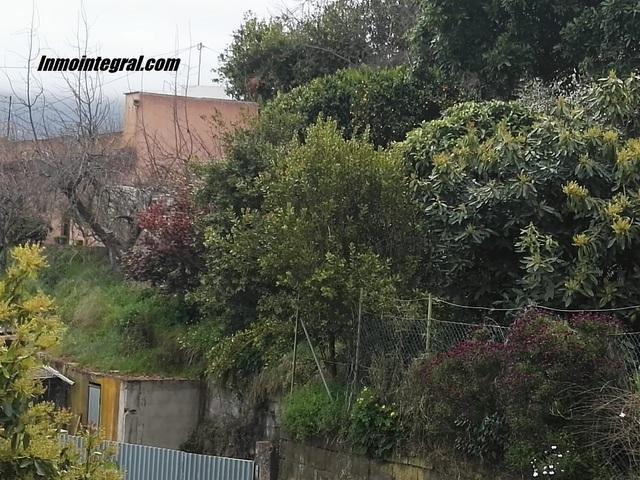 OFERTA FINCA CON CASA,  EN LA OROTAVA - foto 2