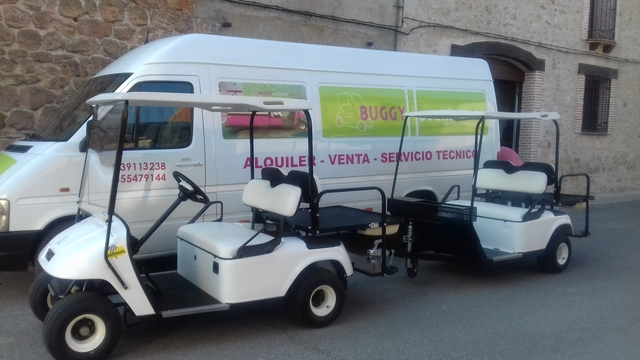 BUGGY GOLF ADAPTADOS - foto 1