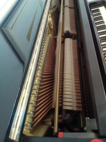 PIANO CLEMENTE KAWAI MUSICAL NEGR CS-21S - foto 6