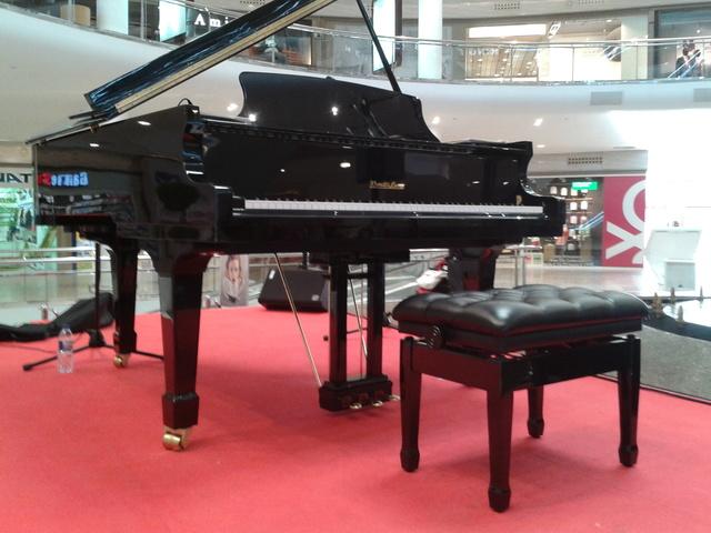 PIANO DE COLA AUSTRIACO DE EXPOSICIÓN  1 - foto 2