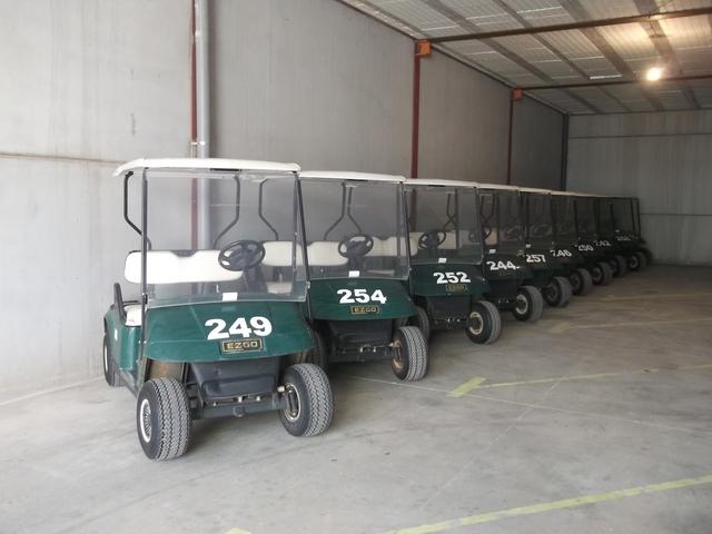 Buggy Golf Ocasion Garantizados