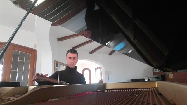 TÉCNICO AFINADOR DE PIANOS.  REPARACIÓN - foto 8