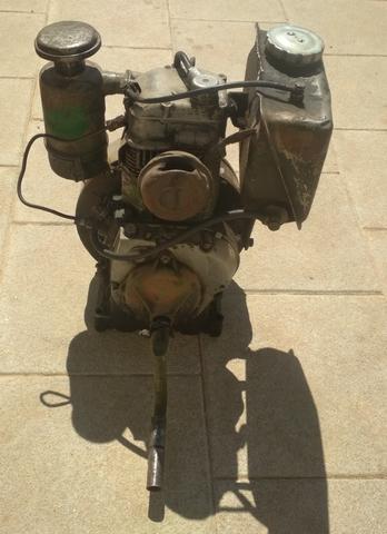 MOTOR DITER 6CV - foto 3