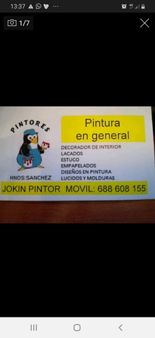 PINTOR PROFESIONAL - foto 1