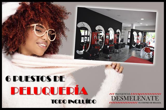 FRANQUICIAS DESMELÉNATE PELUQUERÍA - foto 4