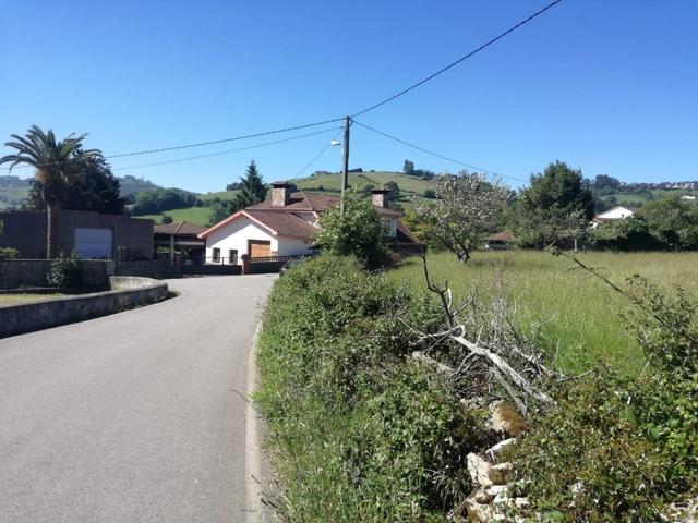 CENERO - TRUBIA - foto 4