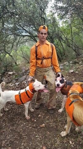 CHALECOS / PETOS PROTECCIÓN PERROS CAZA - foto 4