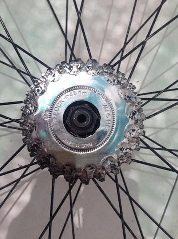 Rueda Bicicleta Carretera Campagnolo Fix