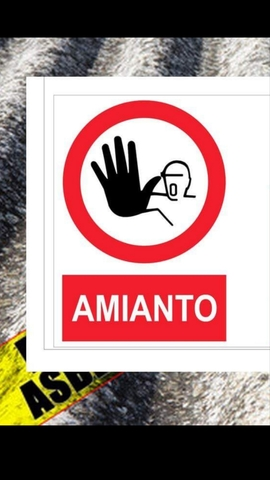 DEMOLICION Y RETIRADA DE AMIANTO - foto 2