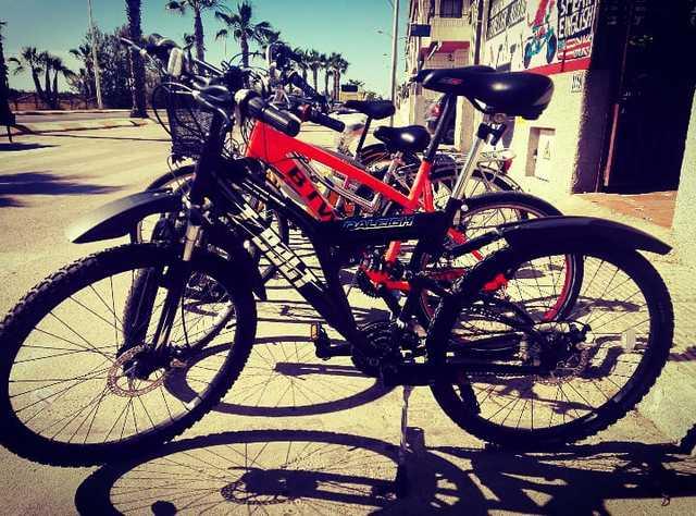 BICYCLE STORE RENTAL SALE WORKSHOP PARTS - foto 8