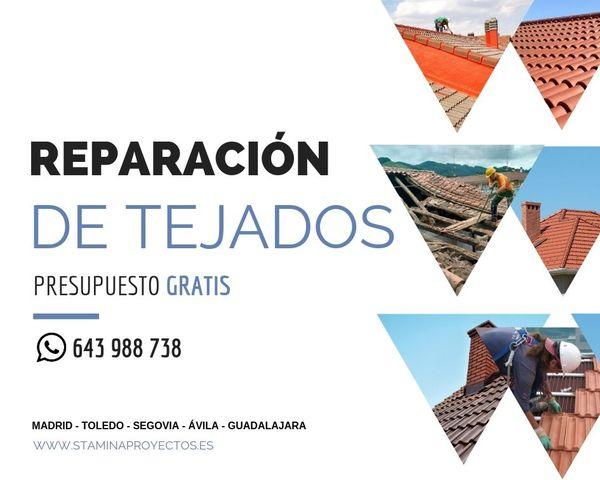 STAMINA | REPARACIÓN DE TEJADOS - foto 1