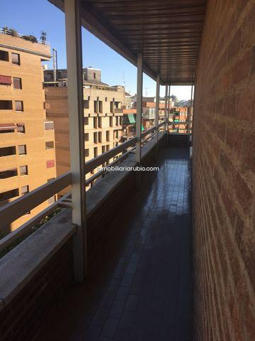 CENTRO - SAN PEDRO DE ALCANTARA - foto 7