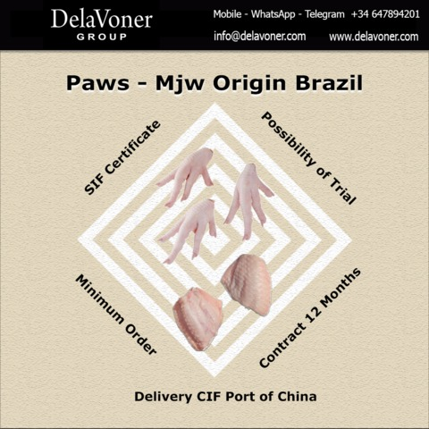 CHICKEN / PAWS / MJW - foto 1