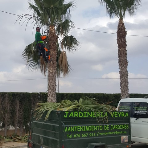 JARDINERÍA GENERAL,  GARDENING ECO VEYRA - foto 3