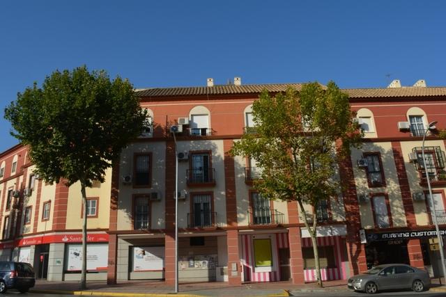 PISCINA Y JARDÍN.  AVENIDA DE ESPAÑA - foto 8