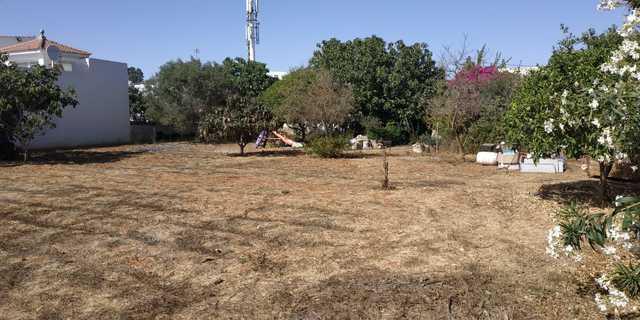 SOLAR EN AVENIDA DE LA DIPUTACION - foto 7