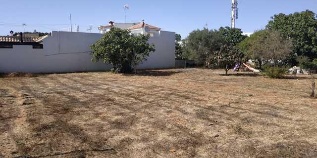 SOLAR EN AVENIDA DE LA DIPUTACION - foto 9